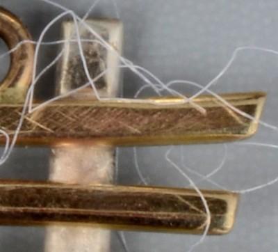 454-cotton-fibers