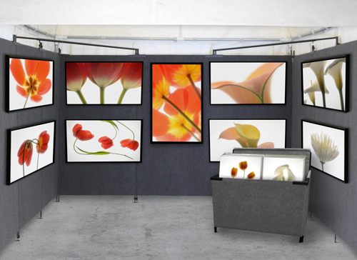 Art Show Booth, formatting images for ZAPP, Juried Art Services and ...