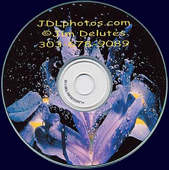 Example of Client CD