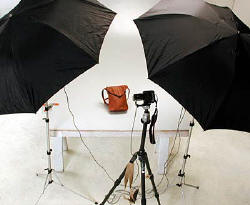 Dual Umbrella Flash set up